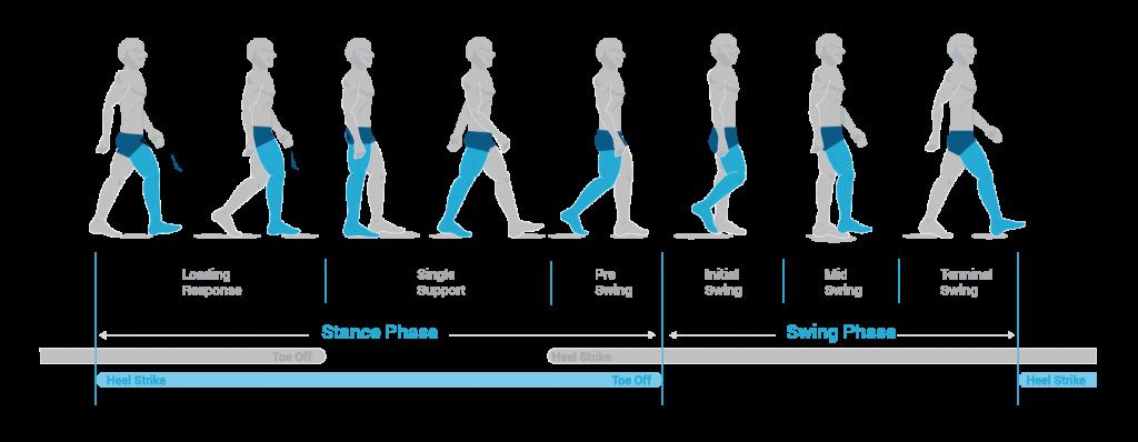 Ganganalyse Laufphasen